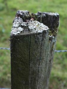 fencepost 3