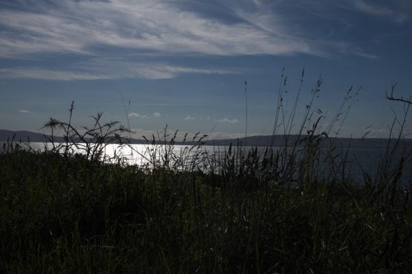 shoreline marks 7-6-15
